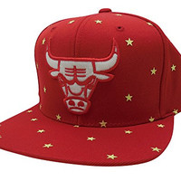 Mitchell & Ness Men's NBA Chicago BullsGlow In The Dark Starry Night Snapback Red