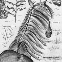 Wild Horse Mustang ACEO Art Print - The Beauty of Horses No.1