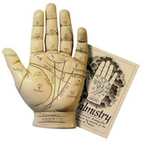 Palmistry Hand Kit: Halloween Holiday Prop Includes 15-Page Booklet
