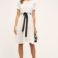 HD in Paris Cecily Lace Dress in White Size: