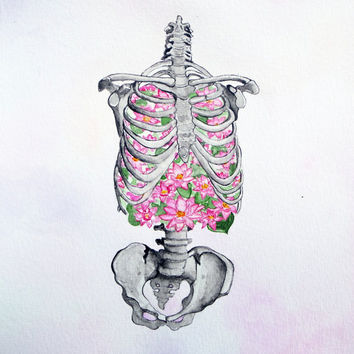 Ribs, lungs, flowers, skeleton, anatomy art, water lily in the lung, Foam of the Days, Boris Vian, human skeleton, breath, drawing, picture