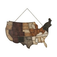 Kate and Laurel USA States Wooden Wall Art