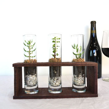 "TERRARIUM - ""Trinity"" - 3 Tall Terraruims with Wine Barrel Base - 100% recycled"