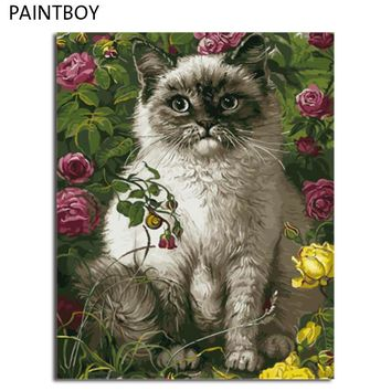 PAINTBOY Framed DIY Painting By Numbers On Canvas Of Animals Cat Oil Painting Home Decor For Living Room Wall Art