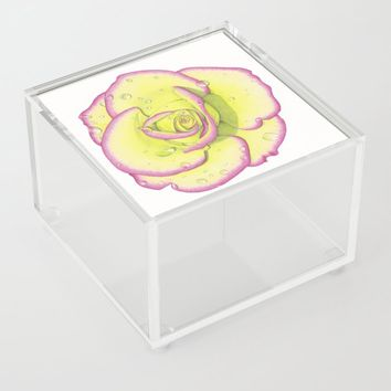 Rose - After the Rain Acrylic Box by drawingsbylam