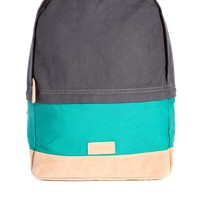 ASOS Backpack with Colo