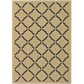 3'7 x 5'5 Indoor Outdoor Area Rug with Black Cream Lattice Pattern