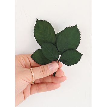 Pack of 10 - Real Preserved Green Rose Corsage Leaves