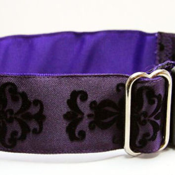 Purple dog collar with black velvet accents: WIDE Buckle dog collar