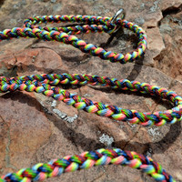 Braided Paracord Slip Lead, 6 Foot Leash and Collar in one