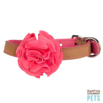 Best Petsmart Martha Stewart Dog Collar Products on Wanelo