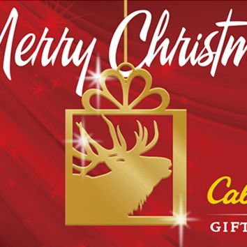 Gift Cards : Cabela's