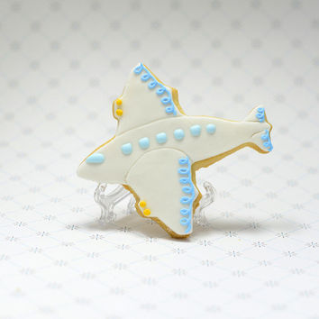 Airplane Decorated Sugar Cookie Favors