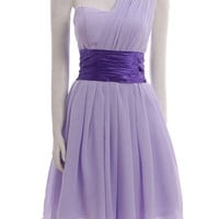 Custom A-line One-shoulder Sleeveless Above knee Chiffon Bridesmaid/Prom/Evening/Party/Homecoming Dress 2013 With Sashes Free Shipping
