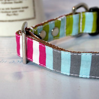 Colorful Patchwork Striped Dog Collar 3/4 Inch Wide