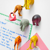 Safari Animal Butt Magnets | Kikkerland Animal Butt Magnets