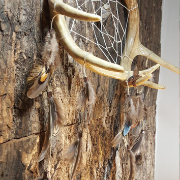 Handmade Real Deer Antler Dream Catcher Whitetail Antlers Arrow Head Center Native American Art Home Decor Feathers Large