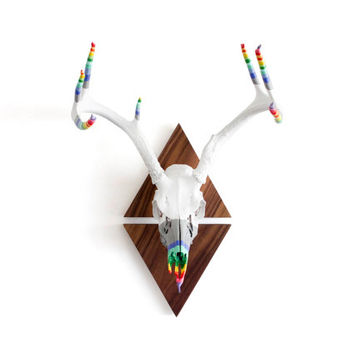 Hand Dipped European Mount Deer Painted Antler Rack on Walnut Triangles - RAINBOW