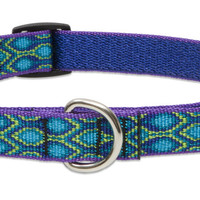 Lupine Rain Song Medium Martingale Dog Collar (3/4 Inch)