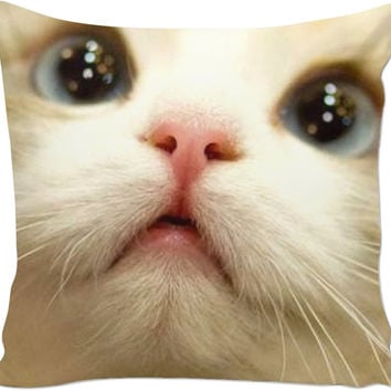Cat In Pillow