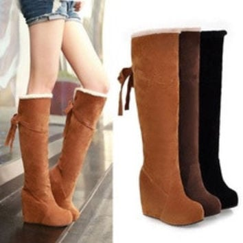 Winter Fur Lining Tall Womens Boots Fashion Knee High Platform Wedge Boots [8384254087]