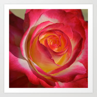 Beauty from Within  Art Print by Lena Photo Art
