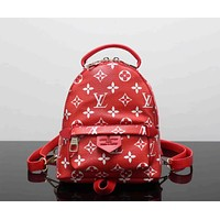 Louis Vuitton Fashion Shoulder Bag Bookbag Backpack Daypack