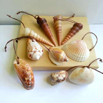Seashell Christmas ornaments coastal tree decorations, natural beach ornament, earthy tones with hemp cord hangers