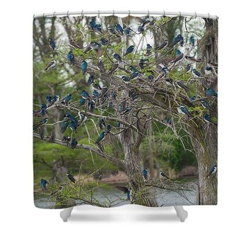 Birds At Reelfoot - Shower Curtain