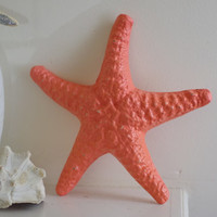 Beach Decor Cast Iron Sugar Starfish - PICK YOUR COLOR