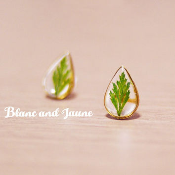 Fern in rain, Pressed flower earrings, tiny flower stud earrings, Real flower earrings, raindrop earrings, geometric earring, Tiny jewelry