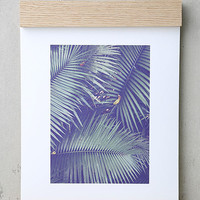 DENY Designs Rainforest Floor Art Print and Hanger