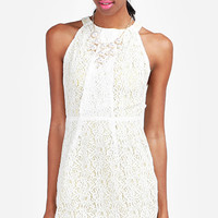 DailyLook: Lace Neon Underlay Dress in Yellow M - L