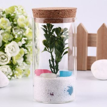 2016 Popular 350ml Clear Glass Bottle with Sealed Cork Beans Tea Leaves Storage Container