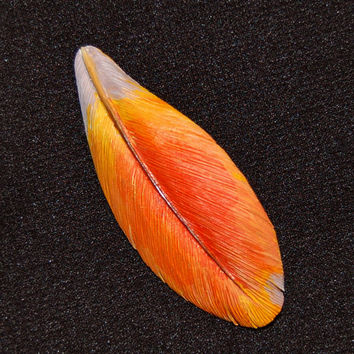 Hand Carved Orange Scarlet Macaw Wood Feather Brooch-bird brooch macaw brooch gift for her bird jewelry feather brooch wooden gift