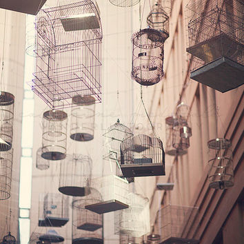 Angel Place - Photographic Print - Australia, Bohemian, cages, birds, boho, beachy, bird, travel, sydney, Wall Decor