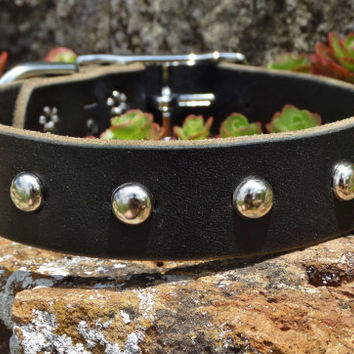 "Studded Leather Dog Collar / 3/4"" wide / Black, Brown, Chestnut, Tan  / Antiqued Nickel  or Brass Spots / Brass Buckle or Chrome Buckle"