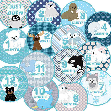 14 Arctic Animals Winter Snow Fox Bear Orca Whale Wolf Unisex Neutral Baby Boy or Girl Monthly Milestone Onesuit Stickers Newborn Shower Gift