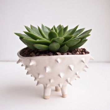 Handmade large white ceramic spiky cactus planter, planter, pottery, plant pot, succulent planter, flower pot, ceramic, handmade ceramics
