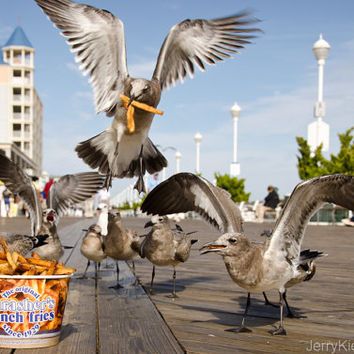 Mine, Mine, Ocean City Boardwalk Photo, Thashers, French Fries, Maryland, Fine Art Photography, Wall Art, Home Decor, Beachy
