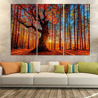 3 Piece Autumn Sun Red Tree Maple leaf Modern Wall Painting Home Gallery Hall Wall Decor Art HD Printed Canvas Picture Unframed