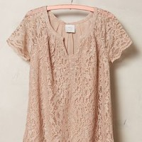 Verga Lace Tee by HD in Paris Silver