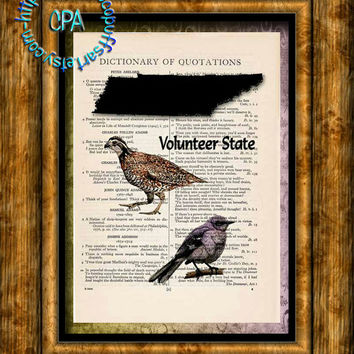 TENNESSEE State Black Silhouette, State Birds, State Nickname Art - Beautifully Upcycled Vintage Dictionary Page Book Art Print