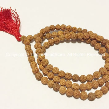 108 beads - 6mm Natural Rudraksha Seed Beads - Nepalese Tibetan Rudraksha Seed Prayer Mala Beads - Mala Supplies - TibetanBeadStore - PB65S