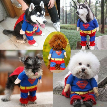 Cute Superman Pet Dog Clothes Halloween Costumes Puppy Jumpsuit Summer Autumn Cotton Pet = 1946359748