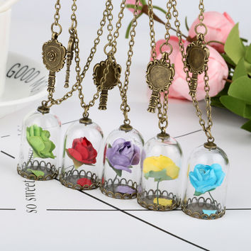 New 2017 Vintage Glass Dried Flower Mirror Magic Bottle Copper Necklace Rose Valentine'S Day Gift Natural Handmade Beauty Beast