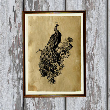 Flower peacock print Old paper Antiqued decoration vintage looking 8.3 x 11.7 inches