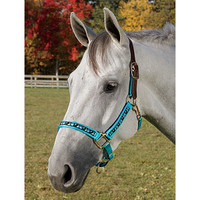 Perris Ribbon Trim Halter | Dover Saddlery