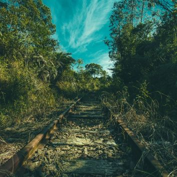 Abandoned Art Print by Mixed Imagery