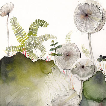 Maidenhair and Mushrooms Archival Print